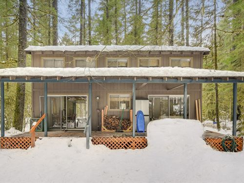 Mountain Cabin Northwoods Cougar : Cougar : Cowlitz County : Washington