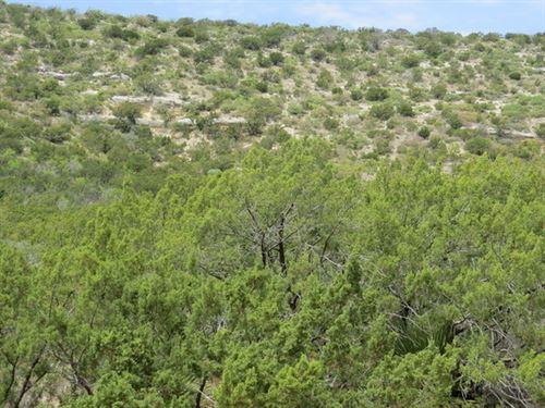 23 Acres, Water Well : Robert Lee : Coke County : Texas