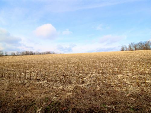 108 Acres Land With Potential : Bloomsburg : Columbia County : Pennsylvania