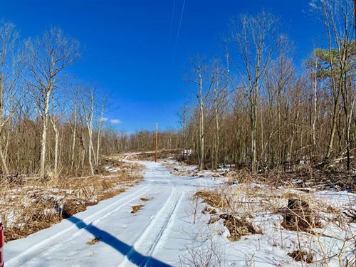 143 Wooded Acres With Views : Berwick : Columbia County : Pennsylvania