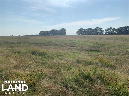 20 Acres in Mabank Isd, Agriculture : Mabank : Kaufman County : Texas