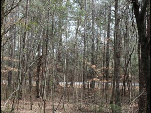 11.25 Acres In Neshoba County In Ph : Philadelphia : Neshoba County : Mississippi