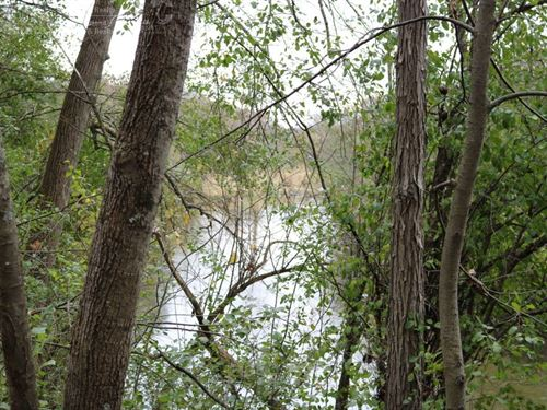 Dodge County Wisconsin Hunting Land : Lebanon : Dodge County : Wisconsin