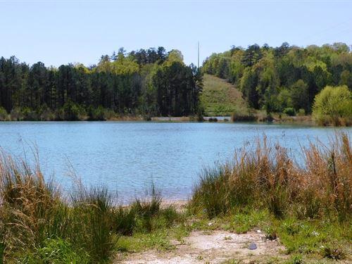 38 Acres With 30 Acre Lake : Talladega : Alabama