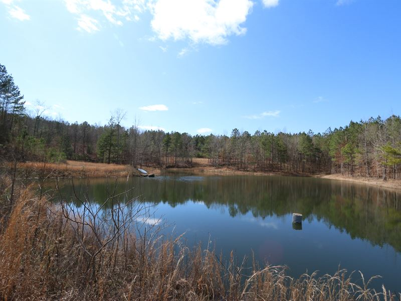 197+/- Acres, Lake & 2 Creeks : Oneonta : Etowah County : Alabama