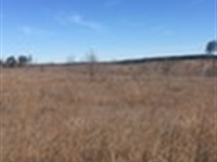 Attala County Hunting Property : Hesterville : Attala County : Mississippi