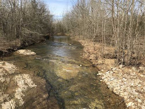 This 20 Acres Has Creek Frontage : Smithville : Sharp County : Arkansas