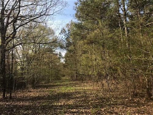 108 Acres of Fine Timber And Hunti : Epps : West Carroll Parish : Louisiana