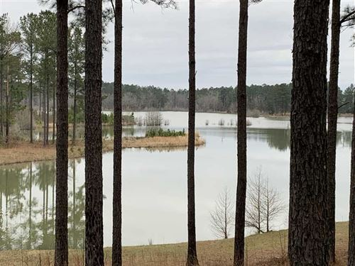 80 Acres on 50 Acre Lake in So : Kosciusko : Attala County : Mississippi
