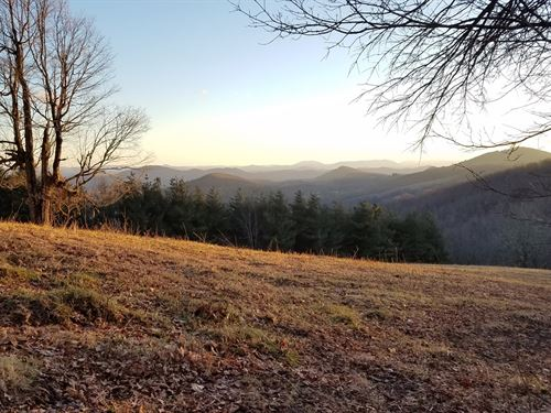 Large Acreage Tract : Troutdale : Grayson County : Virginia