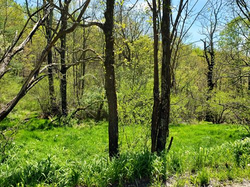 Buildable, Small Acreage Tract : Troutdale : Grayson County : Virginia