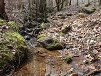 Hunting Retreat At Arbacoochee : Heflin : Cleburne County : Alabama