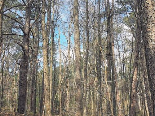Georgia Land for Sale, Property for Sale : Page 127 of 138 ...