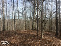 Beautiful Hardwoods, Pines, And Cre : Union : Union County : South Carolina