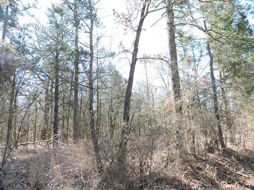 3 Acres M/L Great Hunting Cabin : Waldron : Scott County : Arkansas
