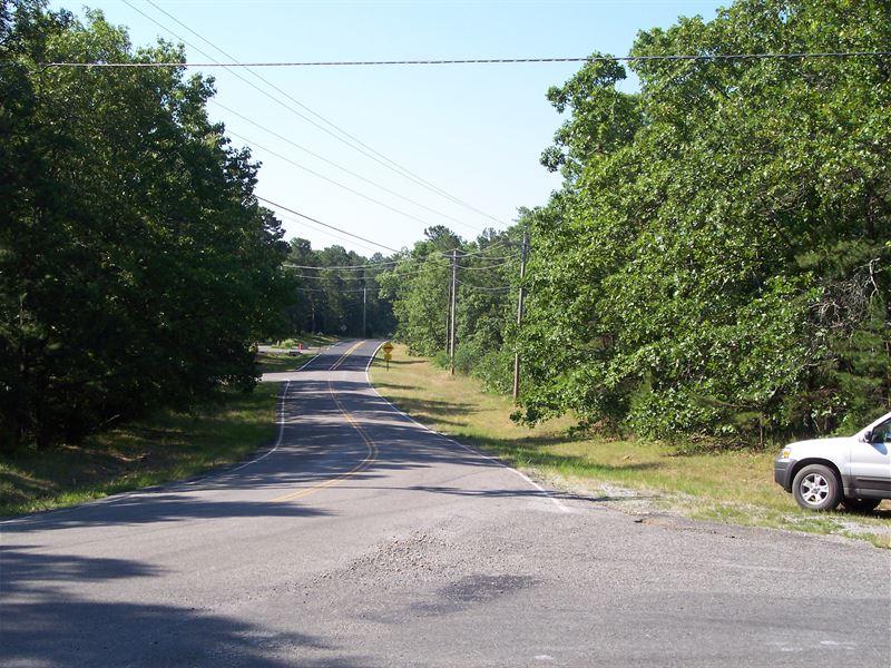Large, Heavily Treed Parcel : Horseshoe Bend : Sharp County : Arkansas