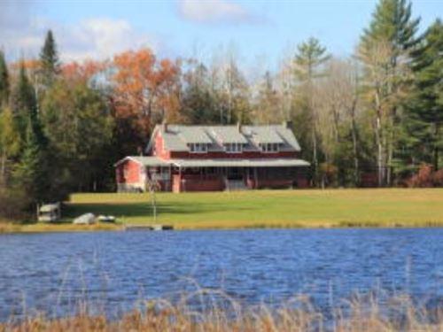 Northern Michigan Hunting Property : South Branch : Iosco County : Michigan