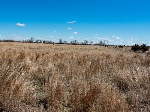 Quivira's Edge 80, Parcel : Alden : Rice County : Kansas