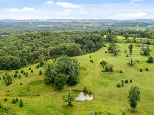 258+/- Acres Full Of Opportunity : Cleveland : Bradley County : Tennessee