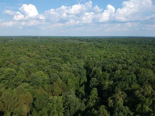 66 Acres, Cherokee County, Sc : Blacksburg : Cherokee County : South Carolina