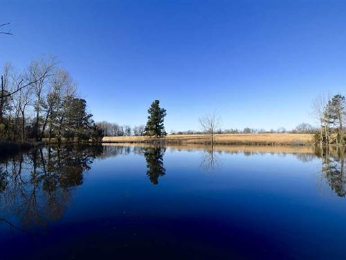 Beautiful Tract Located Approximat : Hugo : Choctaw County : Oklahoma