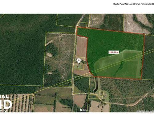 Millen Large Acreage Land : Millen : Jenkins County : Georgia