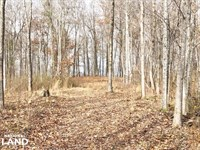 Wilson Lake Waterfront Development : Muscle Shoals : Colbert County : Alabama