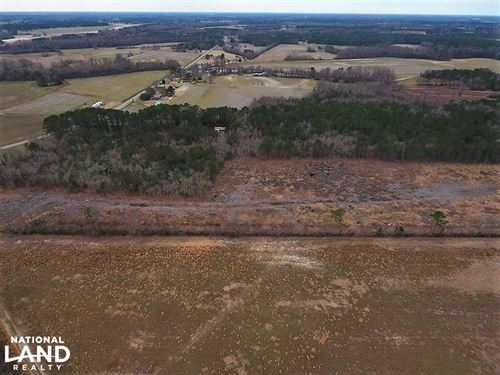 Greene County Hunting/Timber Tract : Snow Hill : Greene County : North Carolina