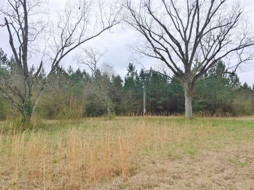Hunting & Timber Land For Sale : Monticello : Lincoln County : Mississippi