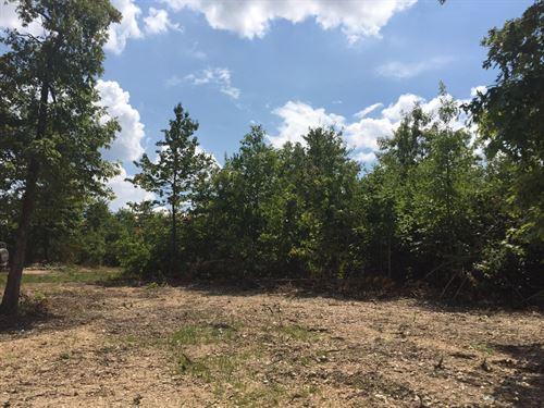 9.77 Acres Recreational Land, Build : Annapolis : Iron County : Missouri