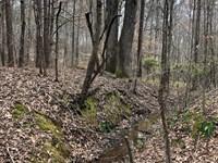 Hard Labor Creek Parcel 3 : Rutledge : Morgan County : Georgia