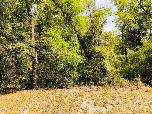 1 Acre Lots, Homes Only S/D 777523 : Chiefland : Levy County : Florida