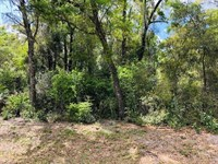 1 Acre Lot 777524 : Chiefland : Levy County : Florida