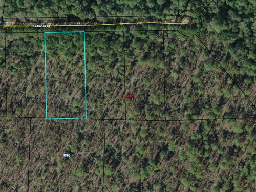 Compass Lake Building Lot Near Lake : Marianna : Jackson County : Florida