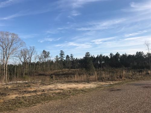 Country Living, Great House Sites : Bogue Chitto : Lincoln County : Mississippi