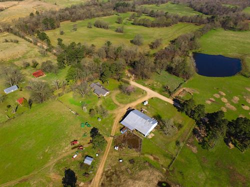 A Cattle Ranchers Dream, A Must See : Horatio : Sevier County : Arkansas