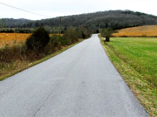 208 Acres Available in Wilson Coun : Watertown : Wilson County : Tennessee