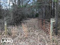 Hunting And Timberland Near Duck HI : Duck Hill : Montgomery County : Mississippi