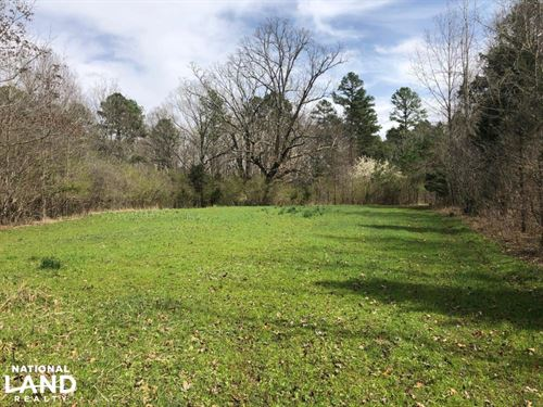 Pines And Farmland Investment Prope : Banner : Calhoun County : Mississippi