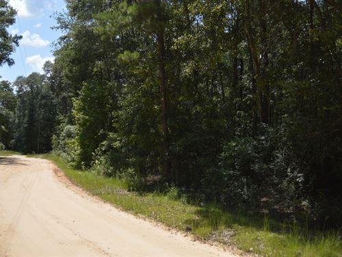 North Florida Acreage For Sale : Greenville : Jefferson County : Florida