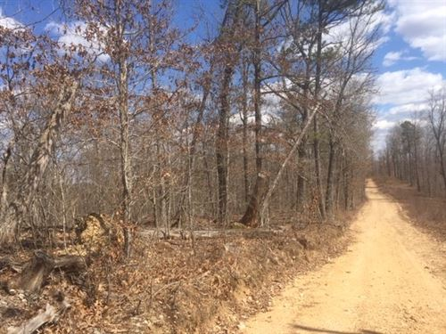 10 Wooded Acres Electric Bordering : Centerville : Reynolds County : Missouri