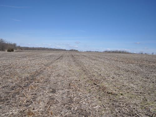 High Tillable Small Acreage Row : King City : Gentry County : Missouri