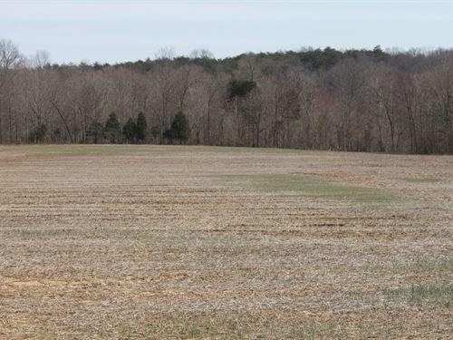 91.52 Acres Crop, Hunting & Woods : Bowling Green : Warren County : Kentucky