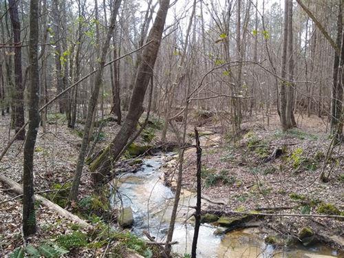 40 Acres, Chester County, Sc : Chester : South Carolina