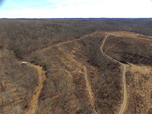 Shurtz Rd, 295 Acres : New Plymouth : Vinton County : Ohio