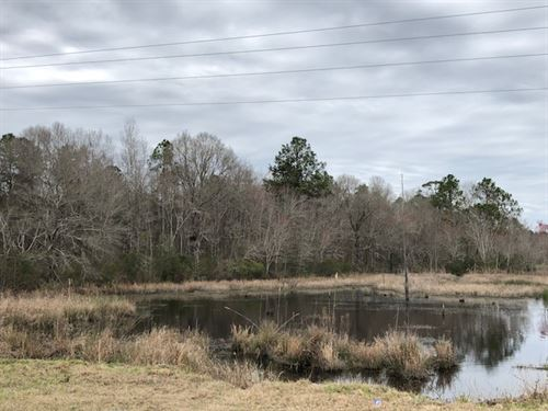 Minter Tweed Retreat : Madison : Laurens County : Georgia