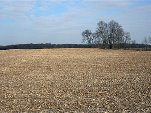 Real Estate Auction In Indiana : Larwill : Whitley County : Indiana