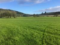 Western Oregon Property : Junction City : Lane County : Oregon
