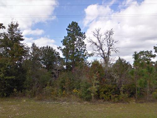 Washington County, Fl $12,000 Neg : Chipley : Washington County : Florida