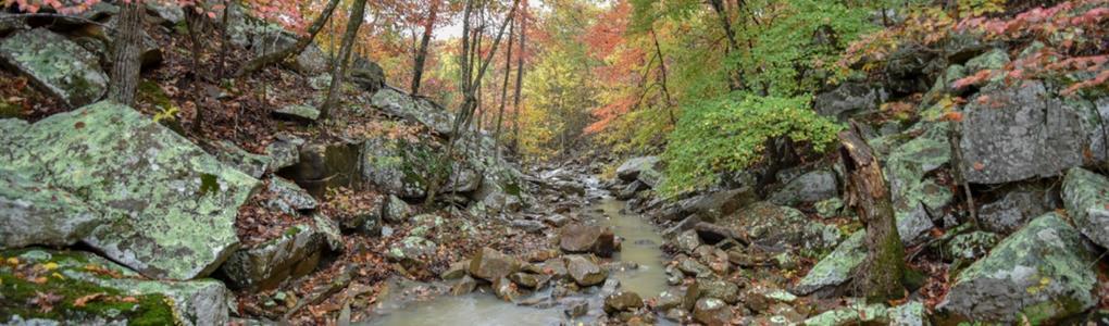 Homesite Bordering A Creek : Tuskahoma : Latimer County : Oklahoma